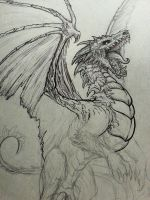 Undead Dragon Sketch by CrystalSully