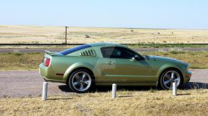 mustang in the oil fields. by shpuz