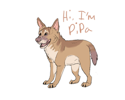 My Name's Pipa by CrankyPup