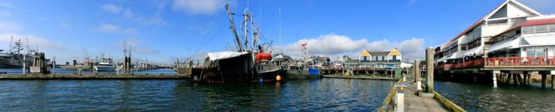 Steveston Harbour by Lady-of-Lakes-End