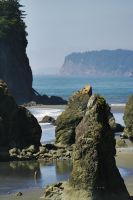 Ruby Beach View by andras120