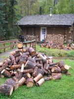 Log Cabin and Firewood by Crowbeak