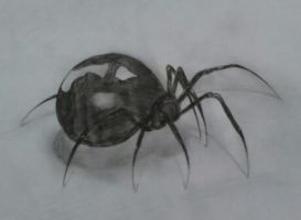 spider in 3D by Annee97