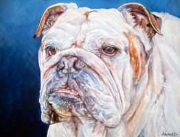 Bulldog by whiterabbitart