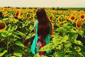 The Girl with the Sunflowers by AMMozart