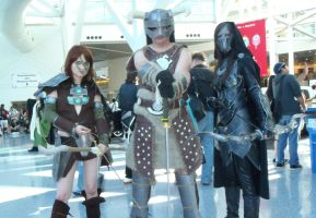 Heroes of Skyrim by Scarlet-Impaler