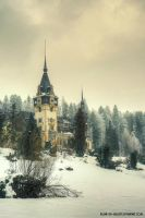 the mighty Peles castle... by Iulian-dA-gallery