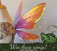 Fairy wing giveaway by FaeryAzarelle
