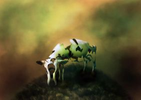 Holy cow by 8025glome