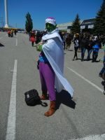 Anime North 2013 - Picolo Cosplay by jmcclare