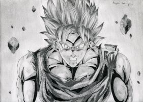 Fury of Goku by tellhowittaste