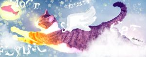 Moon Fish and Flying Cat by ArcanePrayer