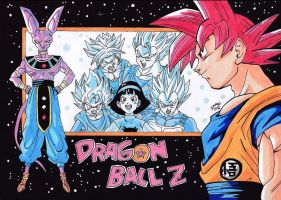 Dragonball Z Battle Of Gods by TriiGuN