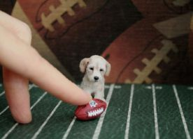 My own Puppy Bowl * Handmade Sculpture * by ReveMiniatures