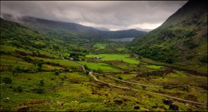 lush green, green means life by LordLJCornellPhotos