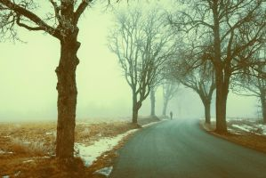 Lonely road by HendrikMandla