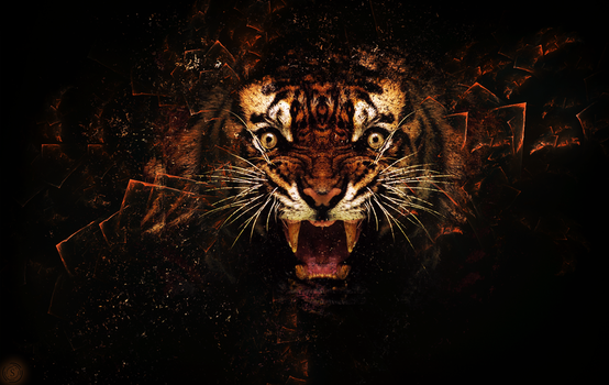 Tiger's Force by SynystraOff