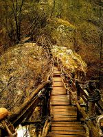 autumn bridge HDR by teditooo-hr