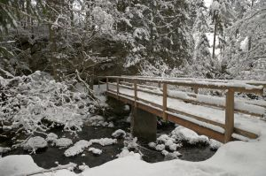 Winterscape With Bridge by Burtn