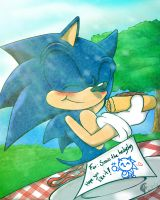 For Sonic: by Merryan