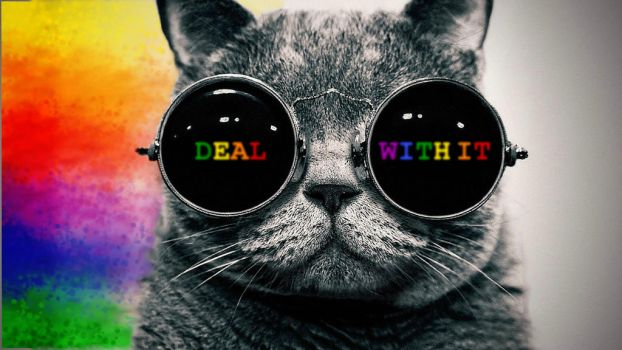 DEAL WITH IT by PCDB