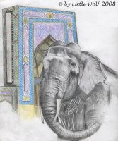 Elephant from Asia by Ptitelouve