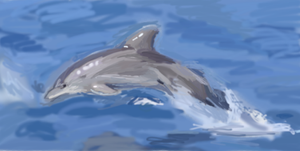 Jumping Dolphin by thefireflii