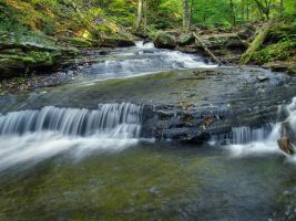 Ricketts Glen State Park 25 by Dracoart-Stock
