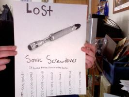 lost poster by MarstersStalker77