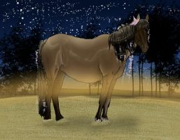 .::Sand in your hooves::. by Aithair