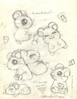 Ham Ham Sketches by HamariHamHam