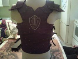 Red LARP Armor-Back by Arronis