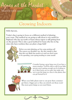Agnes at the Market- Growing Indoors by BagBe-ingInTheKnow