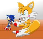 Tails and a lame sonic robot by LackyTheRabbit