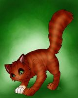 Squirrelflight by AnnMY