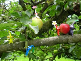 Pikmin - Fruity Treasure by ClayPita