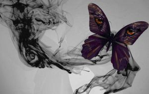 lost Papilio by Eason41