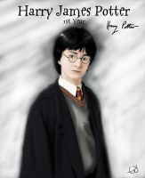 Philosopher's Stone - Harry Potter by Cherry-nichan