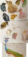 bird drawings by Worm-love