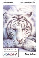 ballpoint pen Art -White Tiger by ArtisAllan