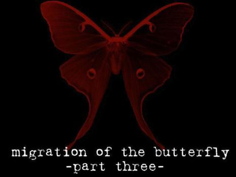 Migration of the Butterfly, 3 by suture