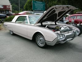 1962 Ford Thunderbird named Rosy by RoadTripDog