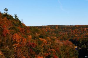 Letchworth State Park Series #12 by LifeThroughALens84