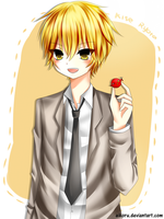 kise by aikoru