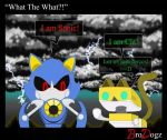 Sonic Boom - What the What?! by BroDogz