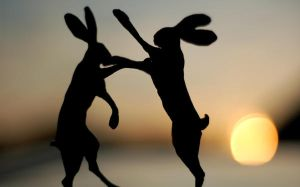 Hares by Megalithicmatt