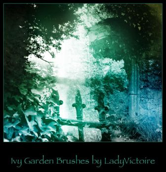 Ivy Garden Brushes by LadyVictoire-Brushes