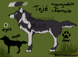 Teje Concept Design by pinkykyra