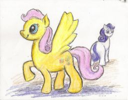 Fluttershy and Twilight by mozer1a0x