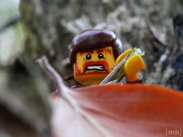 Lego - Out in the wood by fotowerker